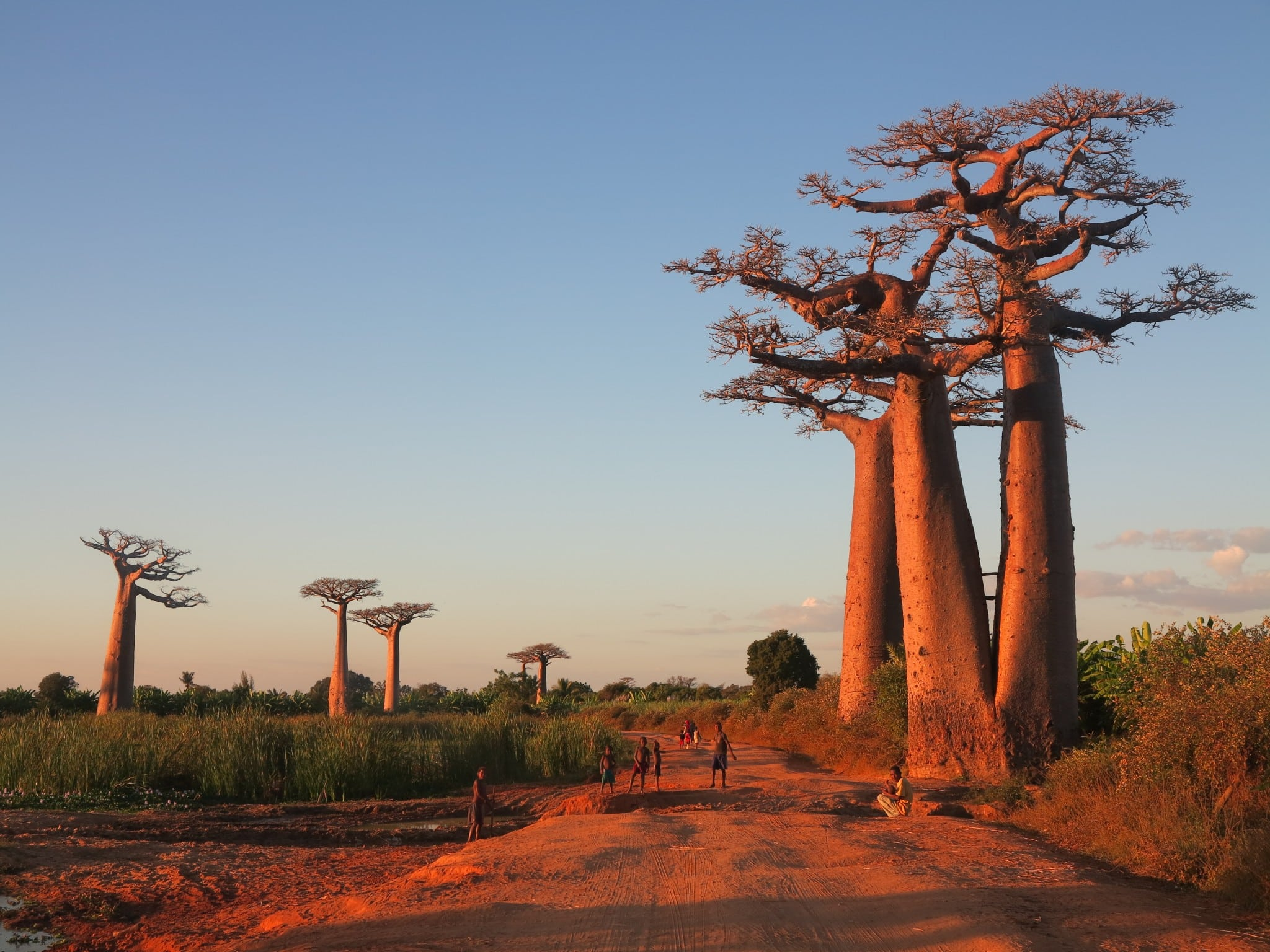 Madagascar – A Lost World