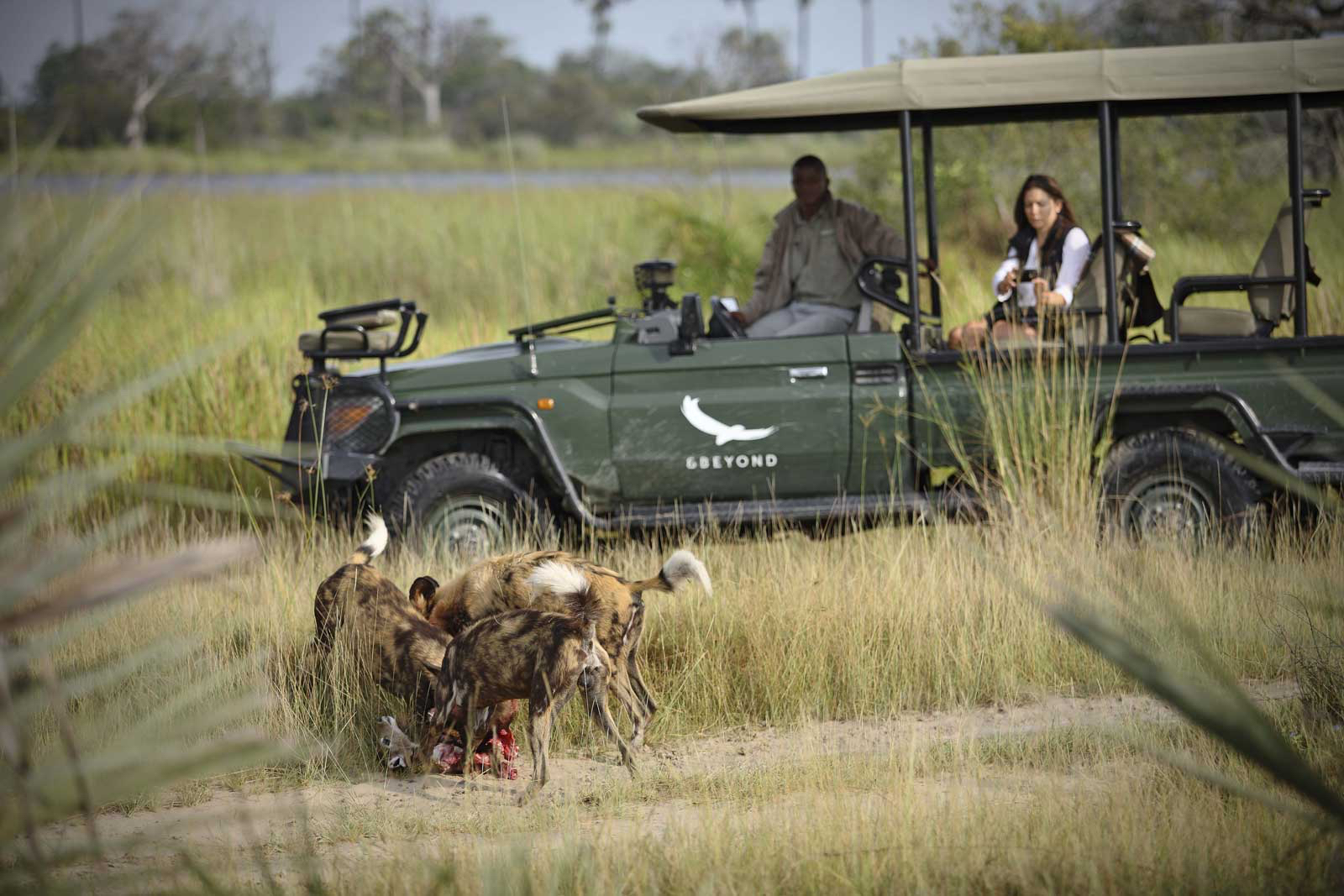 Botswana – Mini Explorer Expedition